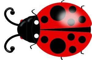 ladybug2_top_w_efx1
