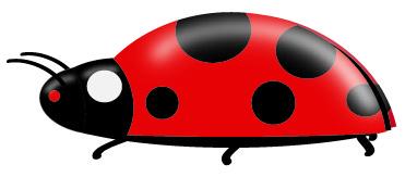 ladybugside_w_efx_300dpi-012
